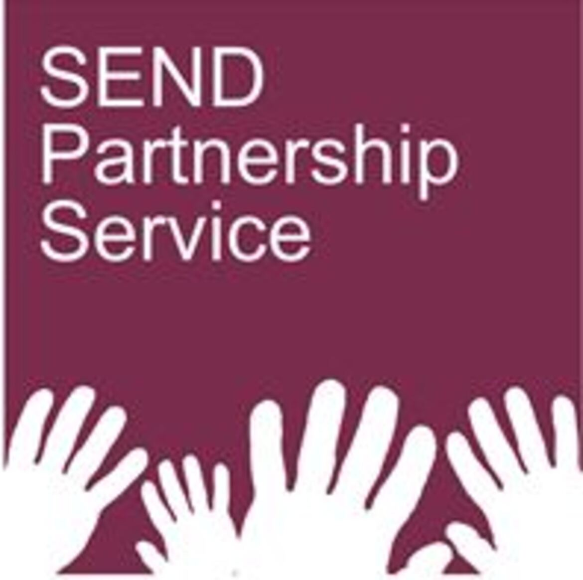 SEND Partnership Service Annual Report 2019-20