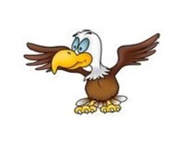 Don't quack like a duck, soar like an eagle!